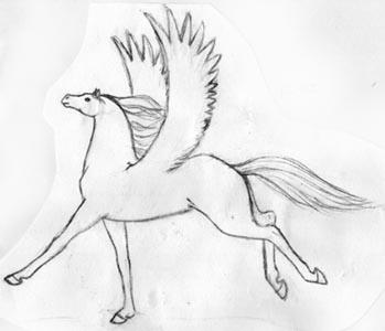 11-92 Pegasus